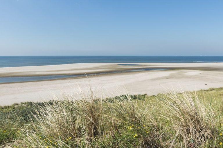 fotobehang: strand bij de maasvlakte