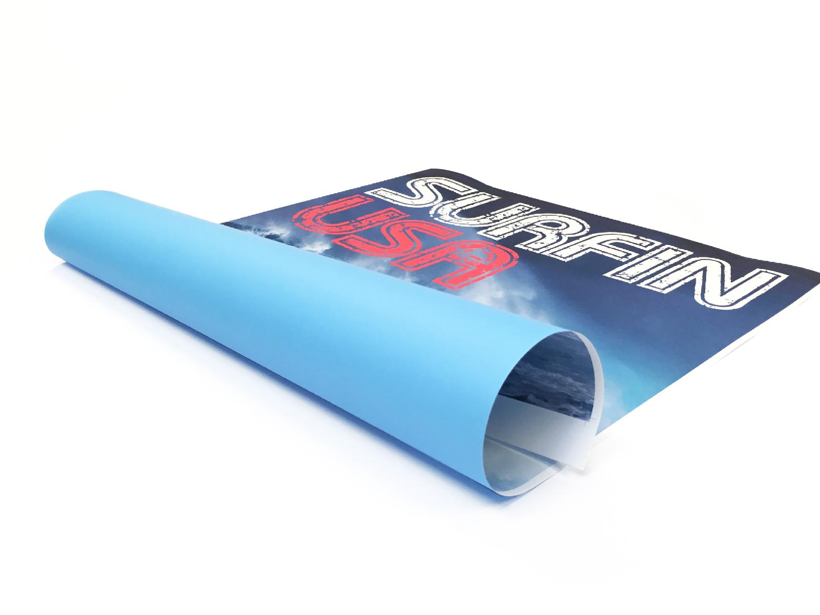Blueback poster